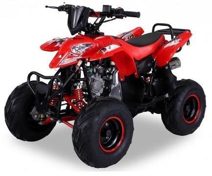 Quad Kinderquad 125cc 4takt kinderquads midiquad atv trike